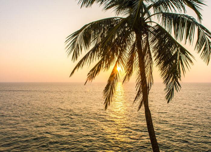 Solnedgang ved kysten